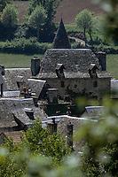 Europe/France/Midi-Pyrénées/12/Aveyron/Vallée du Lot/Sainte-Eulalie-d'Olt : Vue sur les toits du village et le château Solignac