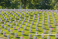 65095-02813 Gravestones at Jefferson Barracks National Cemetery St. Louis, MO