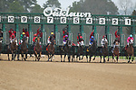February 17, 2020: The start of the Razorback Handicap at Oaklawn Racing Casino Resort in Hot Springs, Arkansas on February 17, 2020. Justin Manning/Eclipse Sportswire/CSM