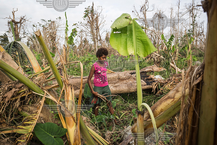14 year old Priscilla helps her mother to clear their garden of detritus that was deposited on it by Cyclone Pam on th enight of 13 March 2015. Her family garden, where they grow much of their food, was destroyed and they were almost left without supplies to eat.