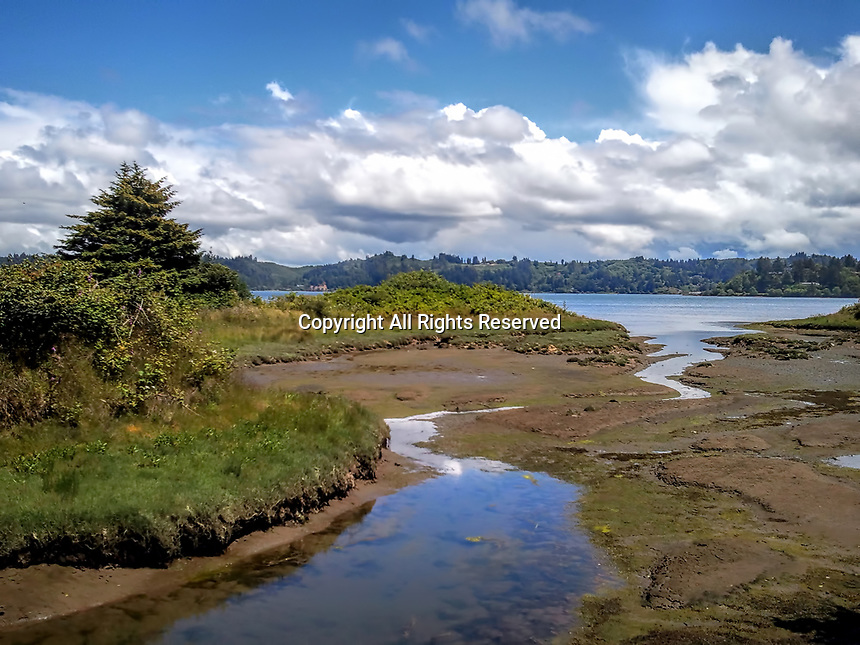 A view of the tidal flats by Newport Bay in Oregon.