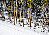 Breckenridge, Colorado, Thursday, March 22, 2012...Photo by Matt Nager
