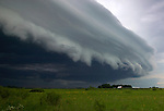 shelf cloud, Brown County, Minnesota