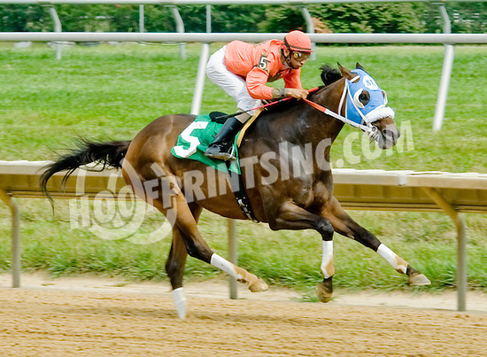 Access Love winning at Delaware Park on 8/1/12