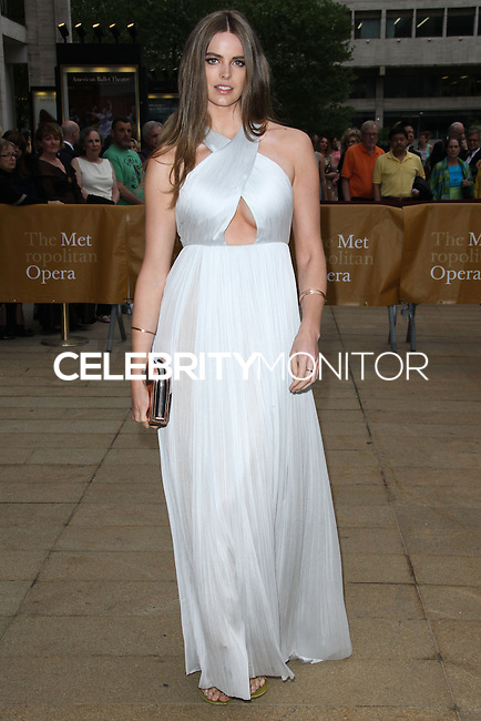 NEW YORK CITY, NY, USA - MAY 12: Robyn Lawley at the American Ballet Theatre 2014 Opening Night Spring Gala held at The Metropolitan Opera House on May 12, 2014 in New York City, New York, United States. (Photo by Celebrity Monitor)