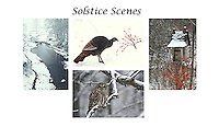 Solstice scenes card set