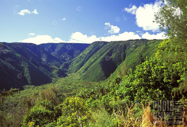Lush green mountains and vegetation in North Kohala on the Big Island of Hawaii.