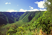 Lush green mountains and vegetation in North Kohala on the Big Island of Hawaii.