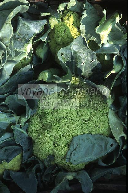 Europe/Italie/La Pouille/Polignano A Mare: Brocolis sur le marché