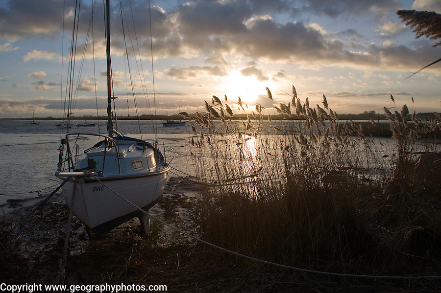 Sunset on River Deben with reeds and moored boat, Ramsholt, Suffolk, England