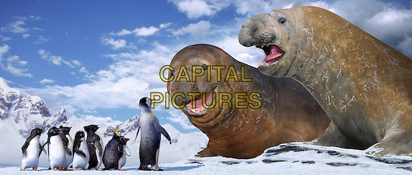 Mumble (voiced by ELIJAH WOOD) & Lovelace (voiced by ROBIN WILLIAMS).in Happy Feet.*Editorial Use Only*.Ref: FB.www.capitalpictures.com.sales@capitalpictures.com.Supplied by Capital Pictures.