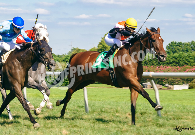 Map Room winning at Delaware Park on 8/24/16