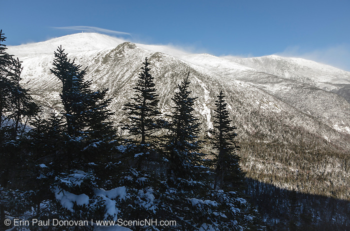 The eastern slopes of Mount Washington from Boott Spur Link Trail during the early winter months in the scenic landscape of the White Mountains, New Hampshire USA . Blowing snow from strong winds cause whiteout conditions .