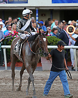 HALLANDALE BEACH, FL - March 31:  #2 Coach Rocks with jockey Luis Saez on board, looks for a spot in the winners' circle after winning the Gulfstream Park Oaks GII.  Scenes from Florida Derby Day at Gulfstream Park on March 31, 2018 in Hallandale Beach, Florida. (Photo by Liz Lamont/Eclipse Sportswire/Getty Images)