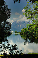 Trees and snow capped mountains reflected in Lake Plansee near Reutte, Austrian Alps. Austria.