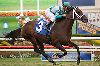 Soldat with Javier Castellano up wins his 2012 debut at Gulfstream Park. Hallandale Beach, Florida. 03-04-2012