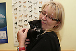 Cat rehoming Day Duleek 20/10/12