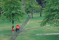 Old Campus, rain, Yale University, New Haven, CT