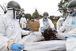 December 8, 2011, Namie-machi, Japan - A detail of Japans Ground Self-Defense Force launches a preparation work for a decontamination operation at the Namie-machi town hall in Fukushima Prefecture, some 230km northeast of Tokyo, on Thursday, December 8, 2011. About 900 GSDF troops began cleanup operations at local government buildings in areas around the disaster-hit Fukushima No. 1 nuclear power plant. The work is to prepare operational bases for full-fledged cleanup that will start next year as a nuclear decontamination law goes into effect in January. They will clean up the buildings with high-pressure water sprayers and metal brushes, while monitoring radiation levels. They will also scrape off the top soil with heavy machinery and shovels, according to the GSDF. (Photo by AFLO) [3620] -mis-