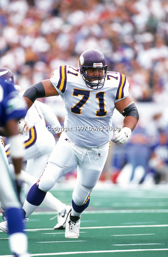 Minnesota Vikings offensive lineman David Dixon (71) during the Hall of Fame NFL football pre-season exhibition game against the Seattle Seahawks at Pro Football Hall of Fame Field at Fawcett Stadium on July 26, 1997 in Canton, Ohio. The Vikings won 28-26. (Photo by David Stluka)