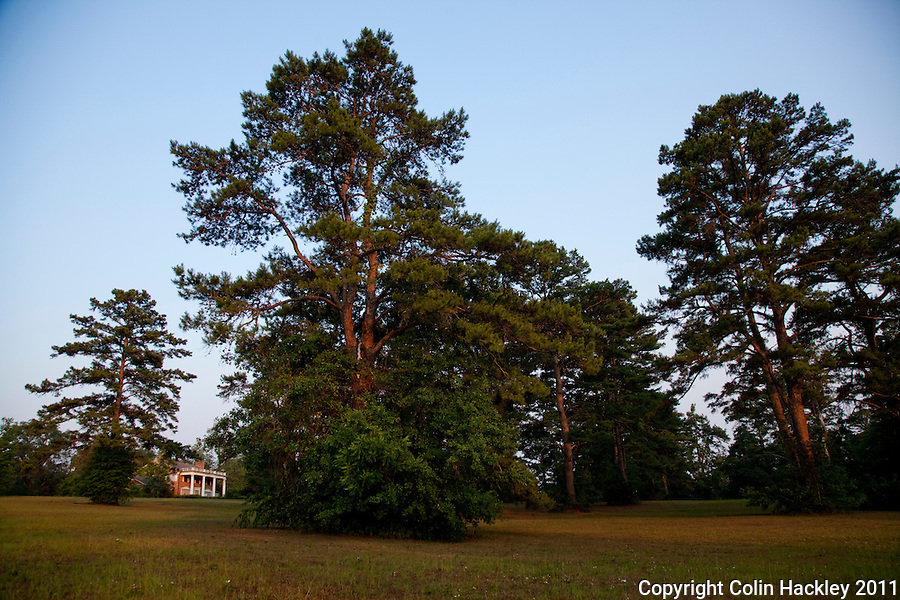 GOVERNOR'S PARK: The passive park is a 10 minute drive from the Capitol..COLIN HACKLEY PHOTO
