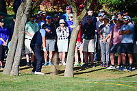 Phil Mickelson (USA) hits from the trees on 5 during round 4 of the World Golf Championships, Dell Technologies Match Play, Austin Country Club, Austin, Texas, USA. 3/25/2017.<br /> Picture: Golffile | Ken Murray<br /> <br /> <br /> All photo usage must carry mandatory copyright credit (&copy; Golffile | Ken Murray)