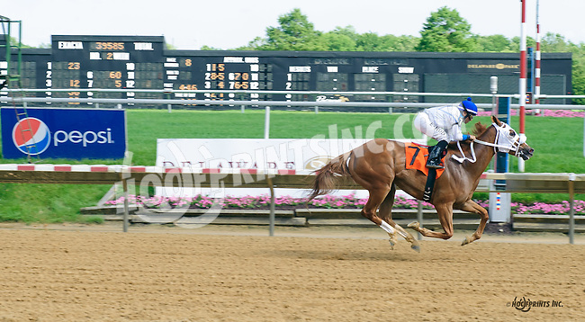 Bill's Passion winning at Delaware Park on 6/6/16