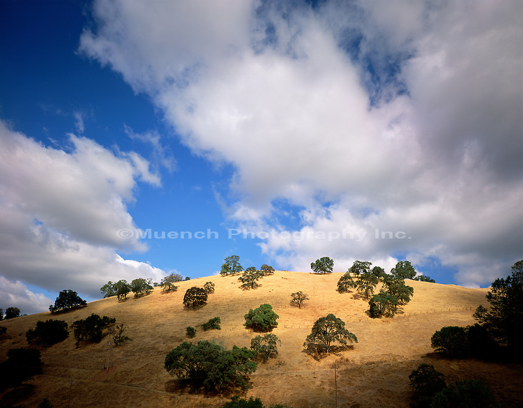 """Western Foothills, Mother Lode Country   CALIFORNIA"""