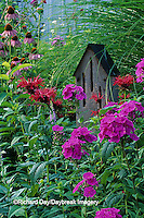63821-04110 Phlox (Phlox paniculata) Bee Balm (Monarda sp.) and butterfly house  Marion Co.   IL