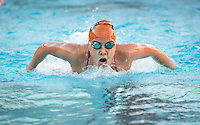 Rebecca Hildreth '17 in the women's 100 yard butterfly stroke. The Occidental College swim team competes against Lewis & Clark College and Westminster College in Taylor Pool on Jan. 6, 2015. (Photo by Marc Campos, Occidental College Photographer)