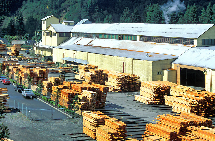 Lumber mill, Scotia, California