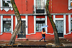 Mexico, Mexico City, Coyoacan Neighborhood, Historic Center, Place of the Coyotes