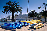 Sea Kayaks, pier, and palm trees on sand beach at Two Harbors, Catalina Island, California
