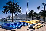 Sea Kayaks, pier, and palm trees on sand beach at Two Harbors, Catalina Island, California