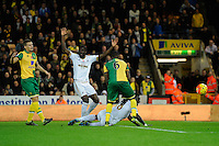 Bafetimbi Gomis of Swansea City reacts after being brought down bySebastien Bassong of Norwich City during the Barclays Premier League match between Norwich City and Swansea City played at Carrow Road, Norwich on November 7th 2015