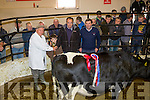 Moo Champ<br /> -----------------<br /> Pictured at Gortalea mart last Thursday afternoon are L-R Norman Bateman, Judge, Shane O'Sullivan, Richard Langford, Killorglin, owner of the winning Supreme Champion Heffer spring calving under 2yrs with Maurice Brassil, Gortalea mart manager