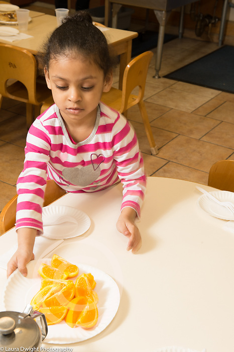 Education Preschool 4 year olds girl doing classroom job setting table for lunch, putting plate of orange slices on table