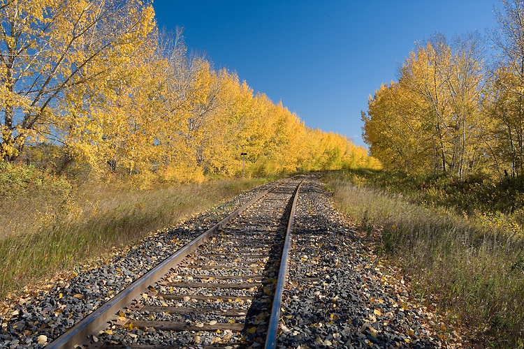Fall morning along a railway line