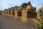 Avenue of ram-headed sphinxes (a symbol of the god Amun) leading to the first pylon at Karnak. Karnak is part of the ancient city of Thebes ( built in and around modern day Luxor).The building of the Temple complex at Karnak began in the reign of the Pharaoh Senusret I who ruled Egypt from 1971 -1926 BC. Approximately 30 Pharaohs contributed to the building of the complex and in so doing made it the largest ancient religious site in the world. The ancient name for Karnak is Ipet-isut (Most select of places).