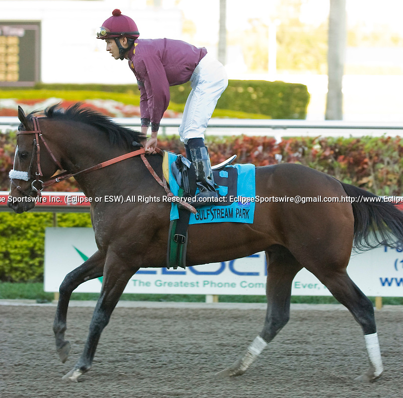 13 March 2010: Cool Coal Man during the Gulfstream Park Handicap at Gulfstream Park in Hallandale Beach, FL.