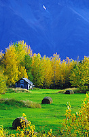 Scenic rural farm landscape with a blue mountain backdrop. Palmer, Alaska.