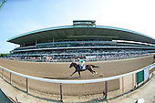 06/22/2013 - Mother Goose Stakes Day
