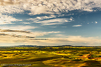 Elevated view of the rolling hills and wheat fields of the Palouse region of eastern Washington from Steptoe Butte at sunrise.