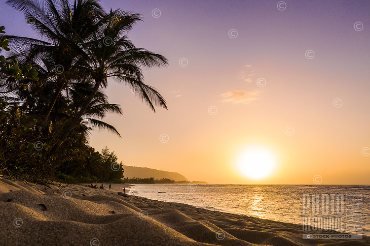 People enjoy Mokule'ia Beach at sunset, North Shore, O'ahu.