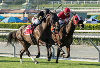 ARCADIA, CA  MARCH 11: #1 Bal a Bali, ridden by Javier Castellano, wins the Frank E. Kilroe Mile (Grade l) on March 11, 2017 at Santa Anita Park in Arcadia, CA. (Photo by Casey Phillips/Eclipse Sportswire/Getty Images)