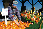 Sentinel/Dan Irving.Tim Boeve of Boeve Farm of Holland, sorts produce on his table at the Farmer's Market Wednesday morning..(11/9/05)