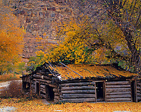 Old Cabin and Fall Leaves, Nine Mile Canyon, Utah
