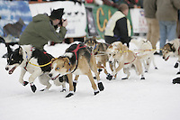 Scott Smiths lead dogs lunge down the star chute at the restart of the 2008 Iditarod in Willow