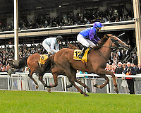 Bold Thady Quill (no. 12), ridden by Shane Foley and trained by K.J. Condon, wins the Finest Surprise Handicap for three year olds and upward on June 30, 2012 at the Curragh Racecourse in Newbridge, Kildare, Ireland.  (Bob Mayberger/Eclipse Sportswire)