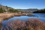 Flat Mountain Ponds in the Sandwich Range Wilderness of Waterville Valley, New Hampshire during the autumn months. The Beebe River Logging Railroad (1917-1942) traveled through this section (on the left). And this is also the area of where logging Camp 10 is thought to have been located.